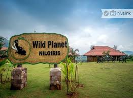 Ooty to Wild Planet Jungle Resort Taxi